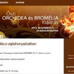 Őszi Orchidea és Bromélia Fesztivál 2014