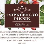 Csipkebogyó piknik Tihany 2013 október 26