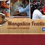 VII. Budapesti Mangalica Fesztivál 2014 február 7-9