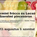 IV. Tokaj Furmint Fröccs és Lecsó fesztivál 2015