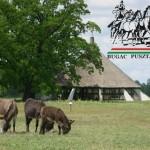 Bugaci Pásztormúzeum és Pásztorskanzen