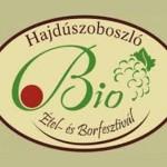 XI. Bioétel és Borfesztivál 2013
