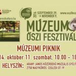 Múzeumi Piknik 2014 Nagykőrös
