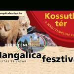 VI. Debreceni Mangalica Fesztivál 2015