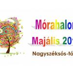 morahalom-majalis