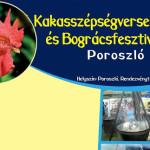 XII. Heves Megyei Kakas Szépségverseny és Bográcsfesztivál 2015